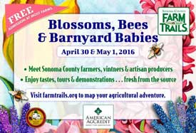 Farm Trails event Blossoms, Bees and Barnyard Babies, April 30-May1, 2016